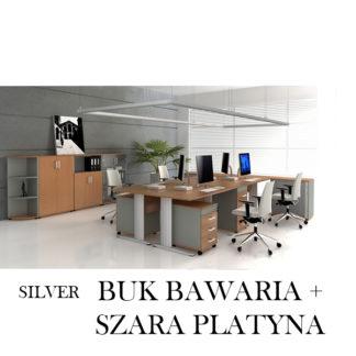 Silver Buk Bawaria + Szara Platyna