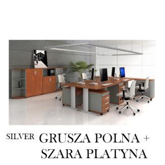 Silver Grusza + Szara Platyna